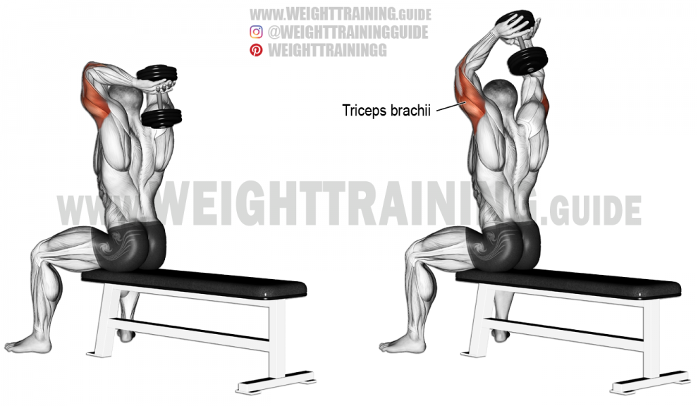 seated-dumbbell-overhead-triceps-extension-990x576
