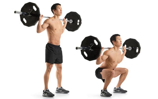 5 barbell squat