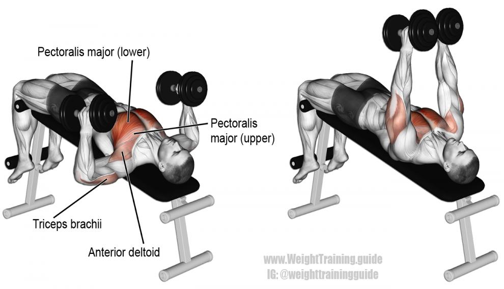 Decline-Hammer-Grip-Dumbbell-Bench-Press-990x568