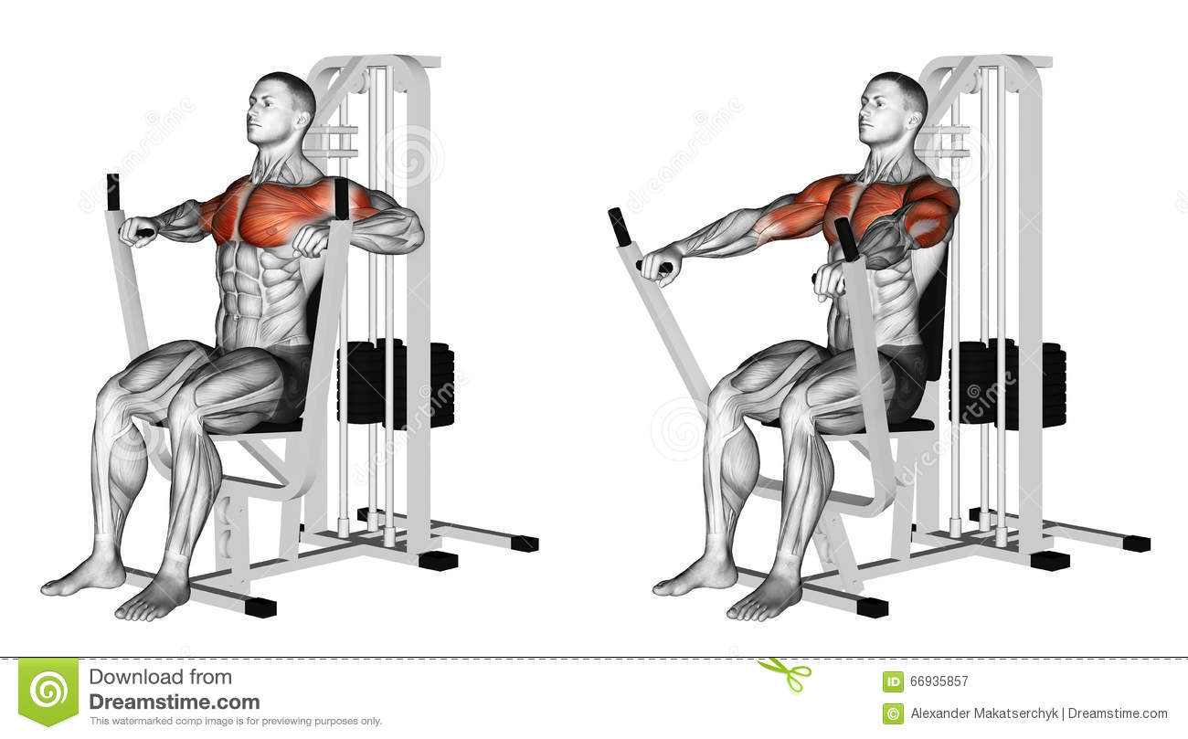 exercising-seated-chests-press-bodybuilding-target-muscles-marked-red-66935857