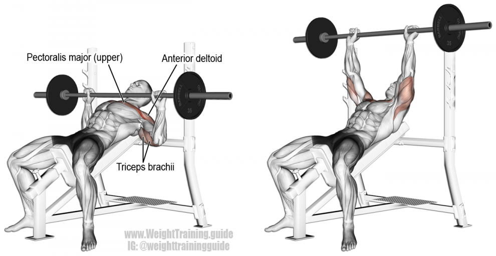incline-barbell-bench-press-990x512