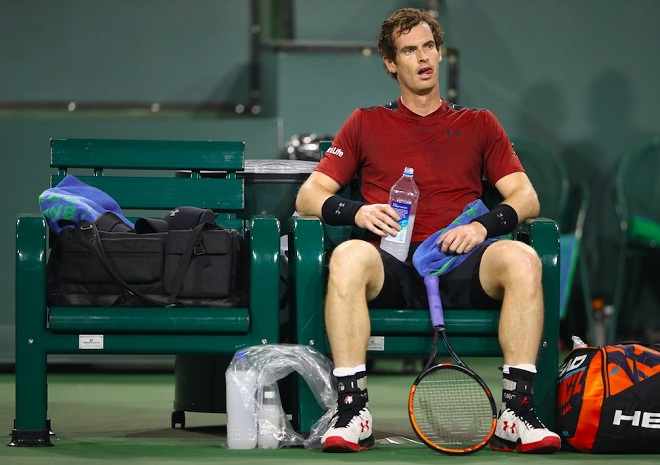 Andy-Murray-660