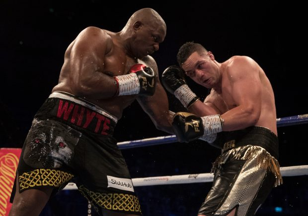 Dillian-Whyte-07