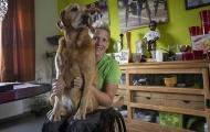 Paralympic: Cảm động nữ VĐV tranh tài trước khi chết