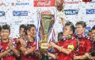 NHM Đông Nam Á đồng loạt nói về hình ảnh 'Việt Nam vô địch'