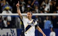 Ibrahimovic: 'Tôi có nhiều danh hiệu hơn toàn bộ MLS'