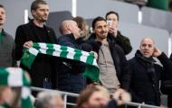 Vi phạm quy định về COVID-19, Ibrahimovic bị chỉ trích ở quê nhà
