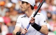 Murray, Federer dắt tay nhau đi tiếp