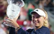 Wozniacki quay lại top 20 thế giới