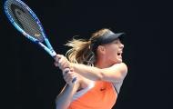 Sharapova trở lại Stuttgart: 'Búp bê' sẽ đòi lại ngôi nữ hoàng?