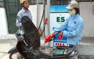 Các chất có trong xăng sinh học làm cháy xe?