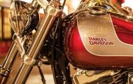 Harley-Davidson thừa nhận phát triển xe 500cc mới