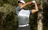 Tiger Woods đạt điểm số tốt nhất trong hai năm