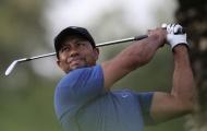 Tiger Woods thừa nhận có thể không bao giờ thi đấu trở lại