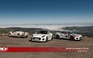 'Báo đốm' ra mắt F-TYPE việt dã kỷ niệm 70 năm dòng xe thể thao di sản Jaguar