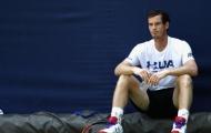 Nếu giải nghệ, Murray chẳng phải lo 'thất nghiệp'