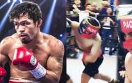Manny Pacquiao ngăn cản con trai nối nghiệp quyền Anh