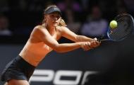 Sharapova tiếp tục báo tin buồn cho NHM