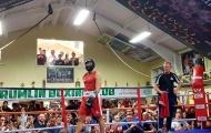 Conor McGregor trở lại sàn… Boxing nghiệp dư