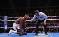 Phản ứng đối lập giữa Fury và Wilder sau thất bại TKO của Joshua