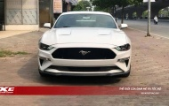 Chào đón thêm chú 'ngựa hoang' Ford Mustang GT 2019 về nước, giá bán 4.5 tỷ đồng