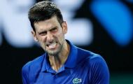 Hạ đẹp tài năng người Nga, Djokovic tái ngộ Nishikori ở tứ kết