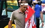 Đẳng cấp lên tiếng, Federer khuất phục khắc tinh Tsonga ở vòng 2 Halle Open