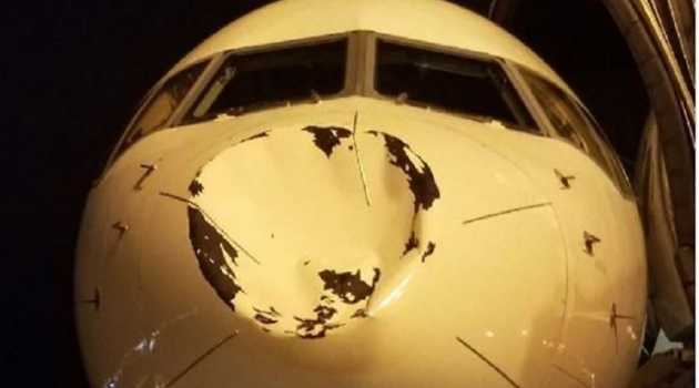 Máy bay chở OKC Thunder bị đe dọa vì một con chim