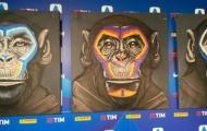 BTC Serie A xin lỗi sau khi so sánh các cầu thủ với loài khỉ