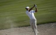 Tiger Woods hụt bước trở lại đỉnh cao