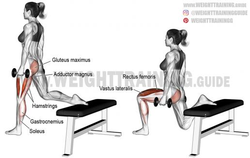 Dumbbell-one-leg-split-squat